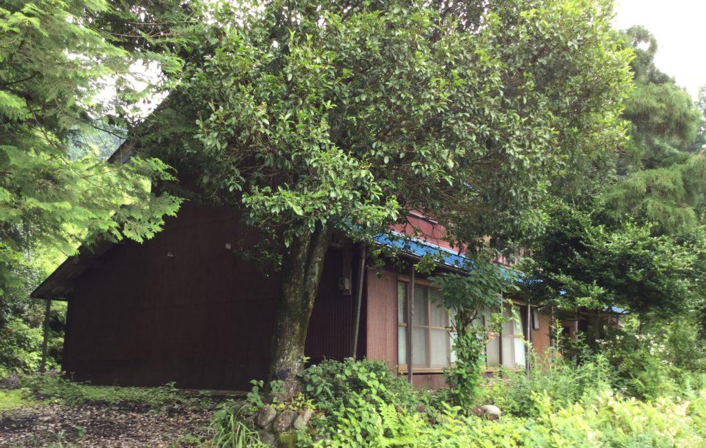 本巣市根尾、本巣市外山、揖斐川町谷汲で空き家を売りたい方